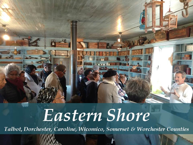Eastern Shore Tours